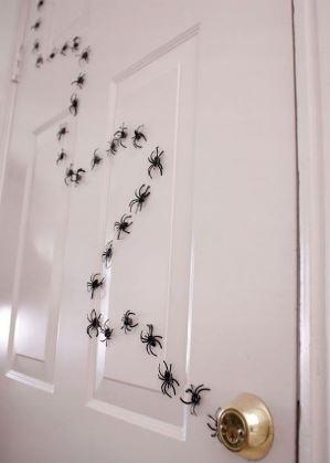 ragni sulla porta per allestimento location festa Halloween